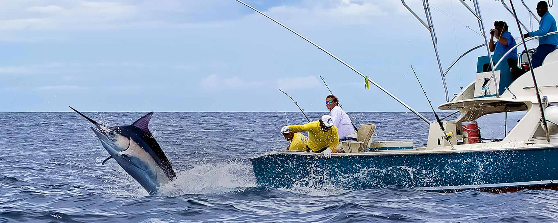 Cast away on a deep sea fishing excursion in jamaica for Deep sea fishing jamaica